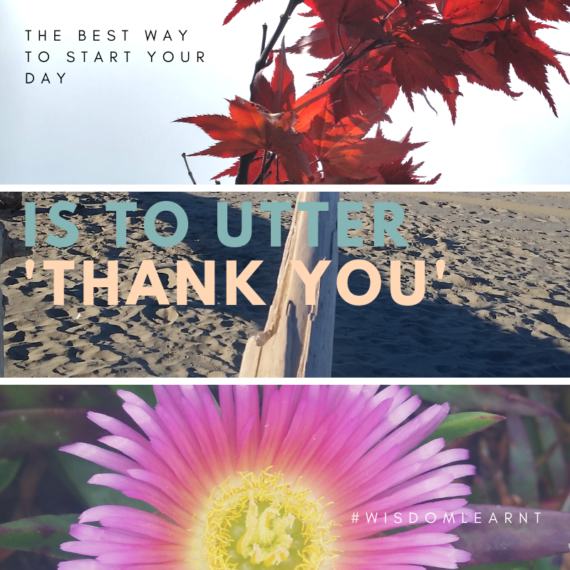 How about giving back - the best way to start your day is to utter thank you